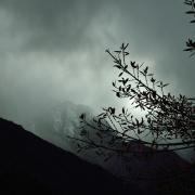 A Cloudy Day Photo By: Subhash Sapru