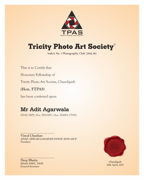 Aditya A